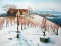 Winterlicher Weinberg