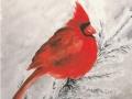 Kardinal-a